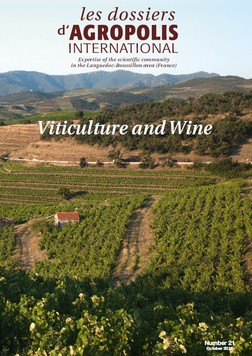Viticulture and Wine thematic file Agropolis International